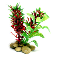 Green and Red Aquarium Plant - 10cm