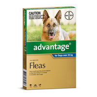 Advantage for Dogs over 25 kgs - 4 Pack - Blue - Flea Control Treatment
