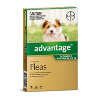 Advantage for Dogs up to 4 kgs - 6 Pack - Green - Flea Control Treatment