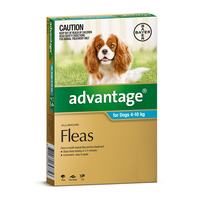 Advantage for Dogs 4-10 kgs - 6 Pack - Teal - Flea Control Treatment