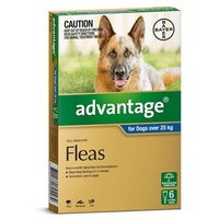 Advantage for Dogs over 25 kgs - 6 Pack - Blue - Flea Control Treatment