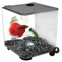 Aqua One BettaStyle Acrylic Tank with LED Light - 3L - Charcoal