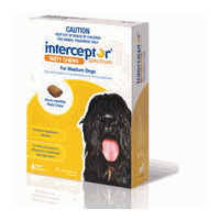 Interceptor Spectrum for Medium Dogs 11-22 kgs - 6 Pack - Yellow