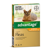 Advantage for Cats up to 4 kgs - 12 Pack - Orange - Flea Control Treatment