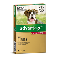 Advantage for Dogs 10-25 kgs - 12 Pack - Red - Flea Control Treatment