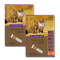Advocate for Cats over 4 kgs - Single Dose - Purple - Flea & Heartworm Control Treatment
