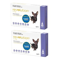 Revolution for Dogs 2.6-5 kgs - 12 Pack - Purple