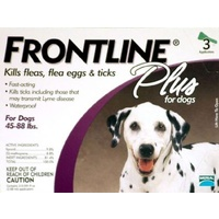 Frontline Plus for Large Dogs 20-40 kgs - 6 Pack - Purple - Flea & Tick Control