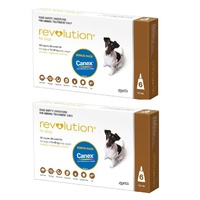 Revolution for Dogs 5.1-10 kgs - 12 Pack - Brown