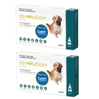 Revolution for Dogs 20.1-40 kgs - 12 Pack - Teal - 2 Extra Vials Free