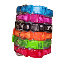 Bubble Dog Collar - Large - 48-70cm (Colours: Blue, Pink, Black & White, Red, Green)