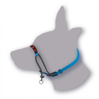 Black Dog Training Halter - Mini/X-Small (Red)