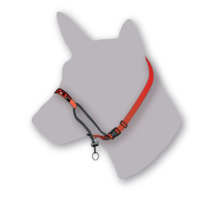 Black Dog Training Halter - Small (Red)